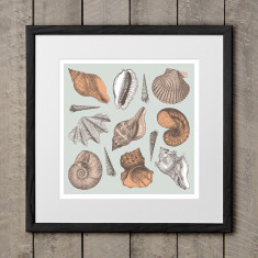 She sells seashell art print