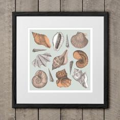 She sells seashell art print