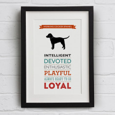 Working Cocker Spaniel Dog Breed Traits Print