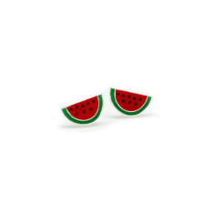 A small world watermelons stud earrings