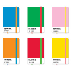 Pantone icon notebooks