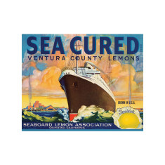 Sea Cured Lemons Poster