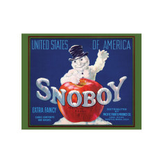 Snoboy Apples Poster