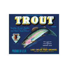 Trout Apples Poster