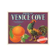 Venice Cove Oranges Poster