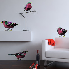 Pop art birds wall stickers