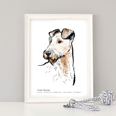 Irish Terrier Art Print