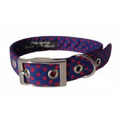 Blue & red spot dog collar