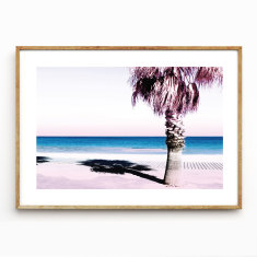 Shady Spot photographic wall art print