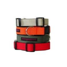 Wonderdog New York collar