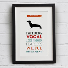 Dachshund Dog Breed Traits Print
