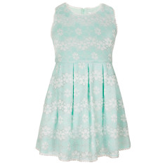 Millicent lace dress