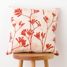 Kangaroo Paw & Buds cushion cover