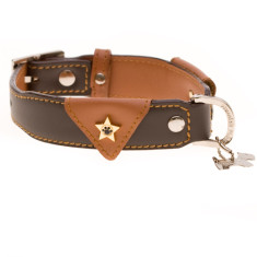 Sandhurst dog collar in brown