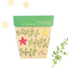 Christmas thyme gift of seeds (set of 4)