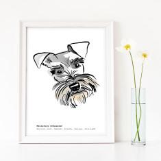 Schnauzer Art Print