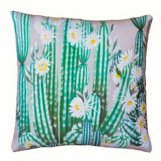 Cactus Cushion (Various Sizes)