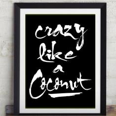 Coconut print