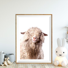 Shaggy angora art print (various sizes)