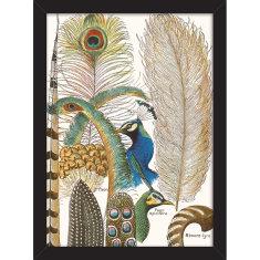 Peacock Plumage Print