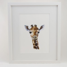 Baby zoo animal framed print (various designs)