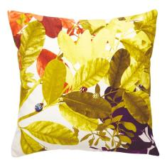 Ghost Gold cushion