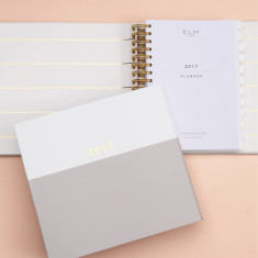 Diary and planner - 2017