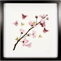 Plum Blossom Large Frame