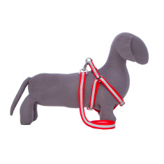 Kings Cross Harness & Lead Set In Red
