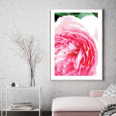 Peony pop art print (various sizes)