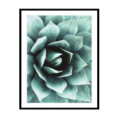 Agave Core Photography Print