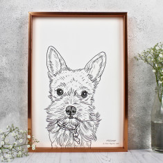 Personalised Pet Portrait Line Drawing