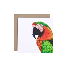 Parrot greeting card (pack of 5)