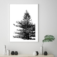 The lone pine art print (various sizes)