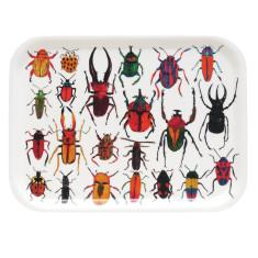 Bug Tray