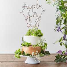 Apple of my Eye Cake Topper