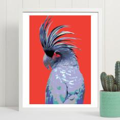 Palm cockatoo art print (various sizes)
