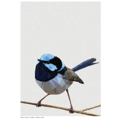 Geometric fairy wren art print
