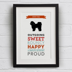 Shih Tzu Dog Breed Traits Print