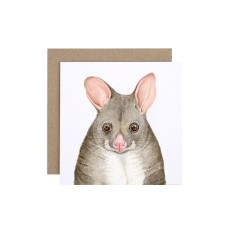 Possum Greeting Card (pack of 5)