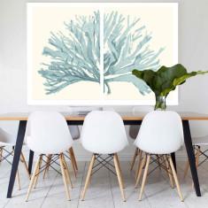 Split Coral Canvas Art