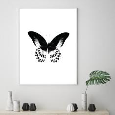 Minimalist butterfly art print
