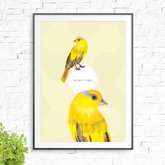 Canary birds print