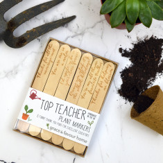 Top Teacher Plant Markers