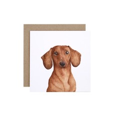Dachshund greeting card (pack of 5)