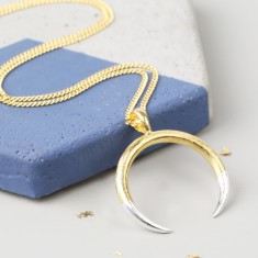 Long Mixed Metal Dipped Horn Necklace