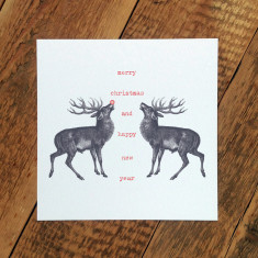 Rudolph and friend Christmas card (pack of 6)