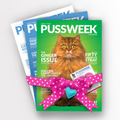 Pussweek Deluxe Love & Indifference Book Pack