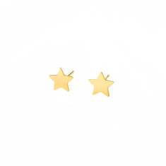 Darling star studs