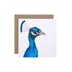 Peacock Greeting Card (pack of 5)